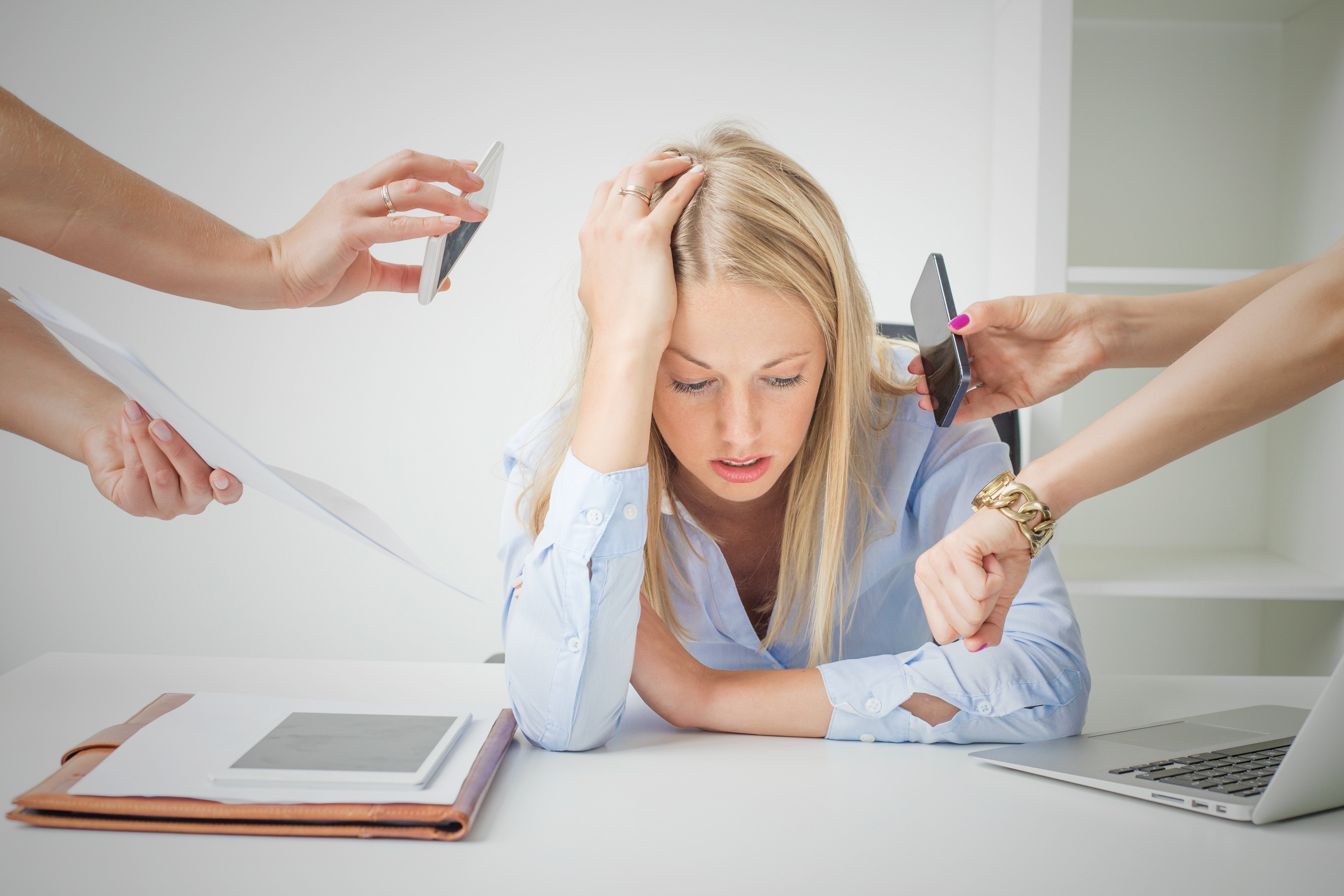 Graduates can't cope with office life